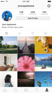 setup an Instagram for Business